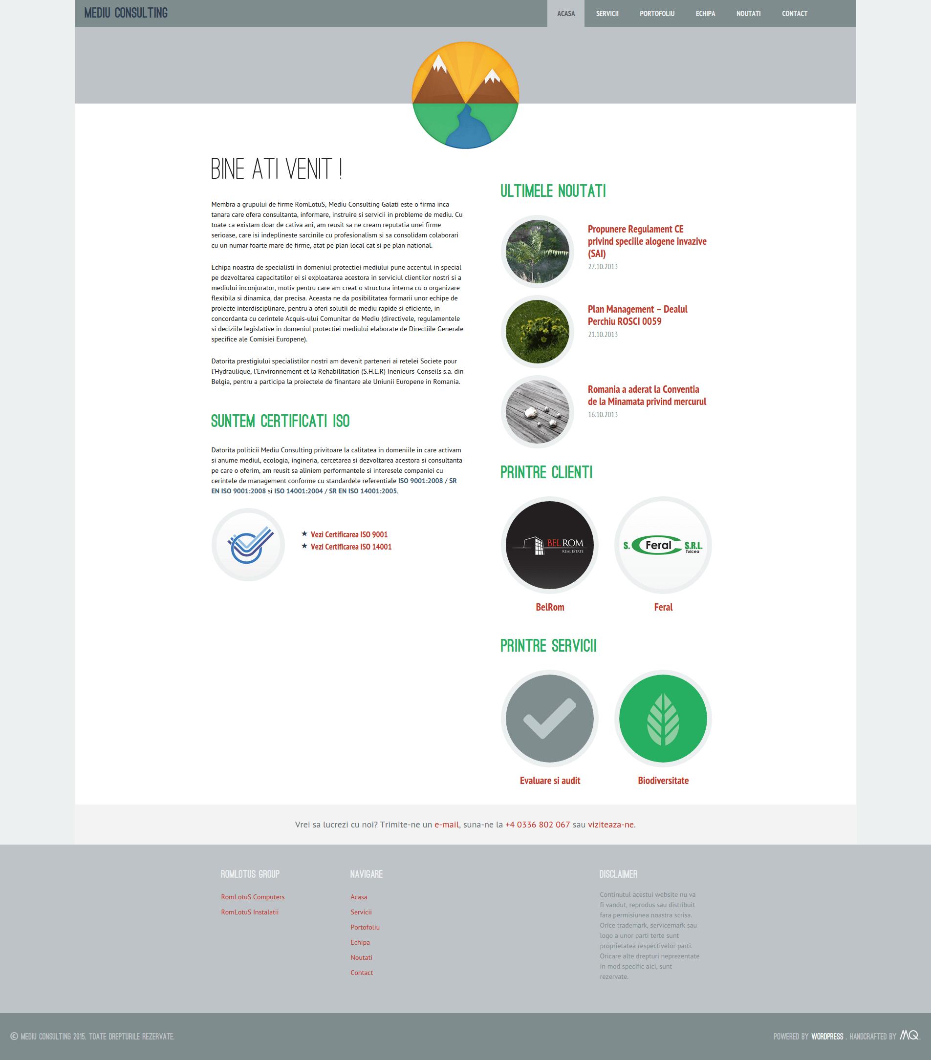 Desktop Screenshot of Mediu Consulting's Website
